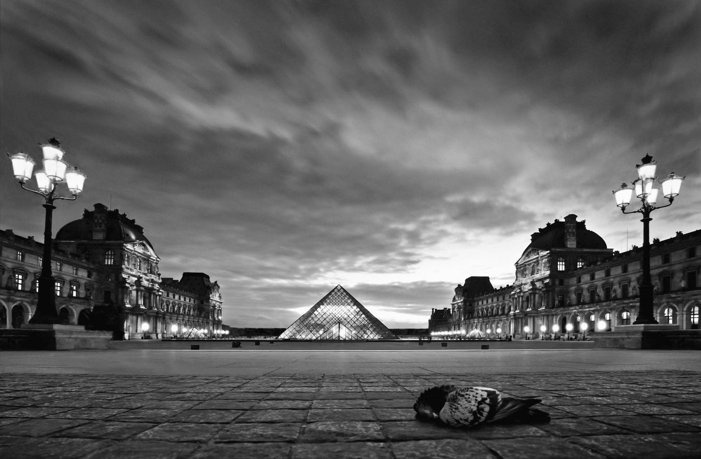 Louvre met dode duif